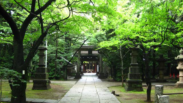 氷川神社 東京 恋愛
